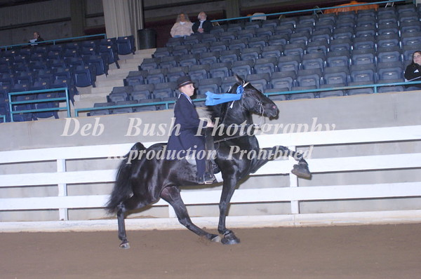 CLASS 3  JUVENILE 11 & UNDER SPECIALTY