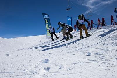Snowboard/Fresski