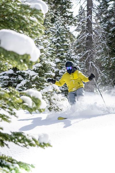 Powder Day Skier