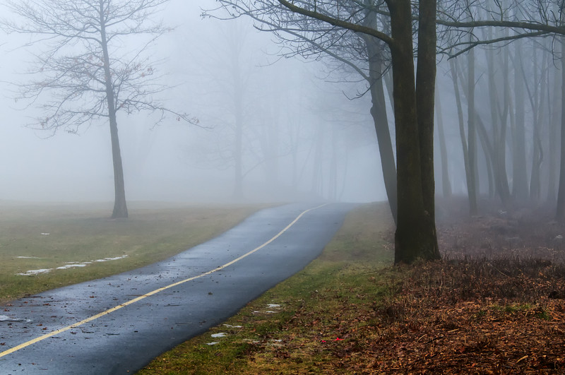 NCC bike path in fog_March 17-2012_01.jpg