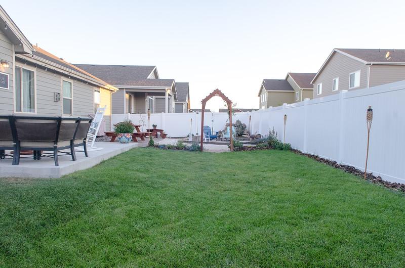 Backyard (6).jpg