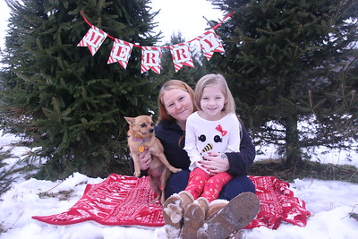11-25-18 Miller Christmas Tree Mini