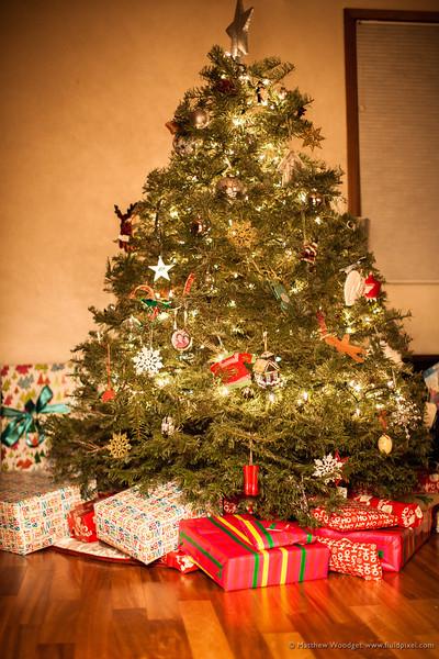 Woodget-131225-009--Christmas, gift - concepts, gift box, presents, Tree, xmas.jpg