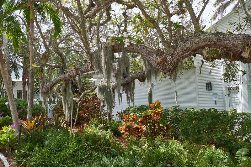 Useppa-Botanical-Walk-117.jpg