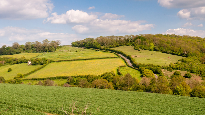 Farmland at Wellow in Somerset