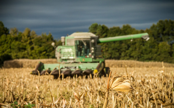 UC Farms
