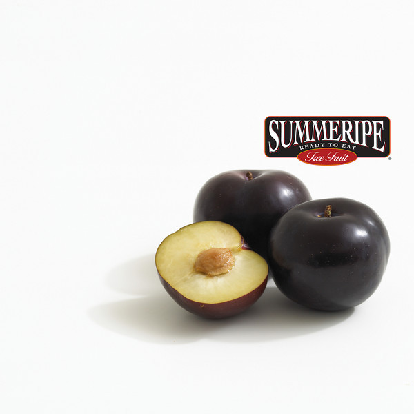 SR_Black_Plum.jpg