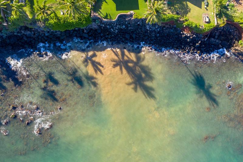 -Hawaii 2018-maui 10-12-18193710-20181012.jpg