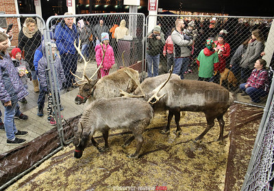 Watkins Glen Village Christmas 12-13-19