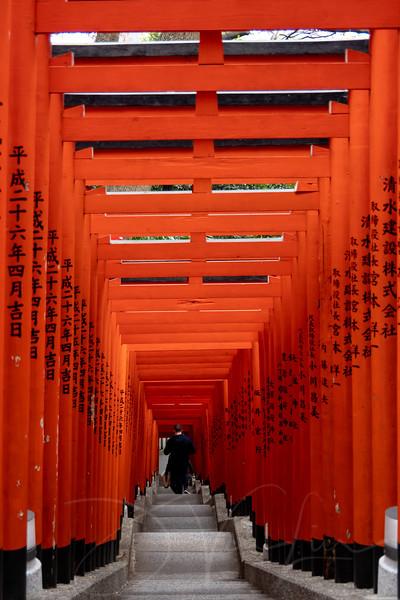 JapanPhotoTour20190204-10.jpg