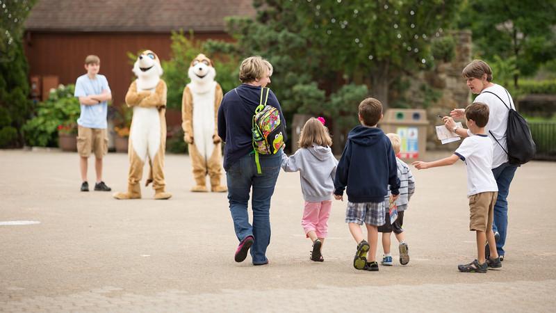 7.8 Zoo Friends