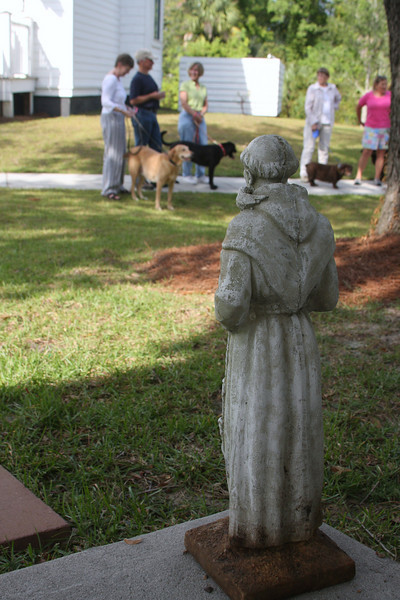 Blessing of the Animals - Church of The Holy Cross on Daniel Island
