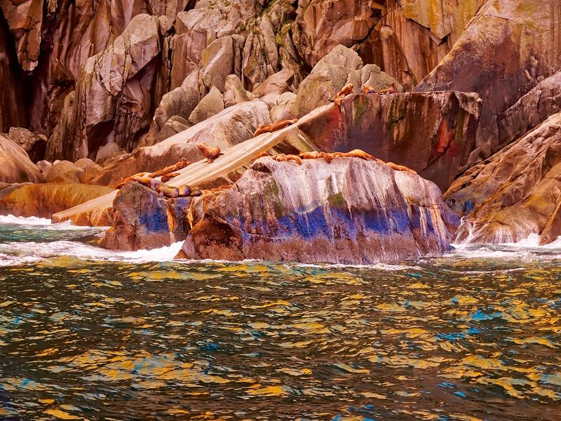 Kenai Fjords Blue-Gold
