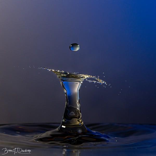 Wet-Day Waterdrops-7625.jpg