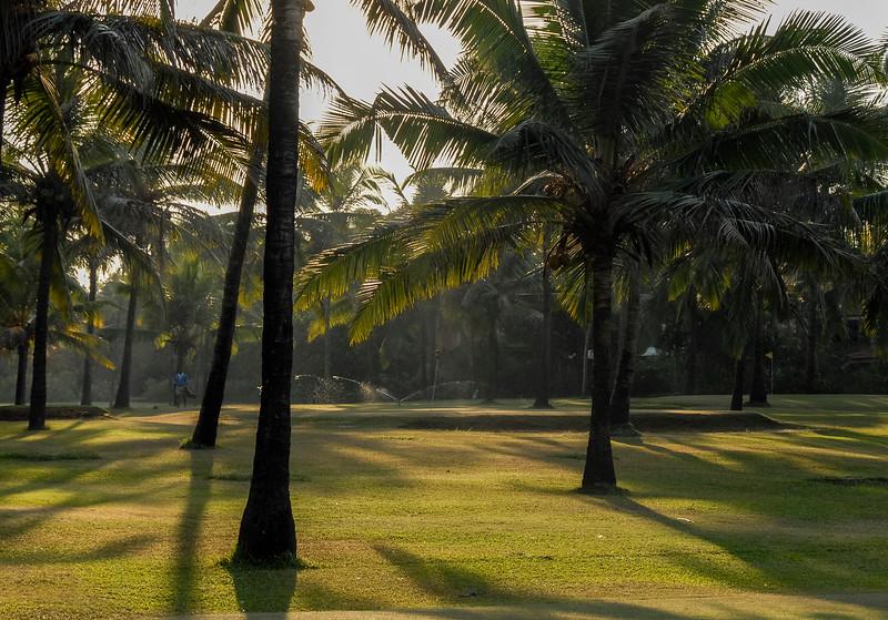 Goa_1206_021.jpg
