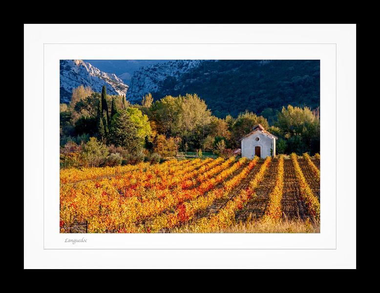 Languedoc frame 2.jpg