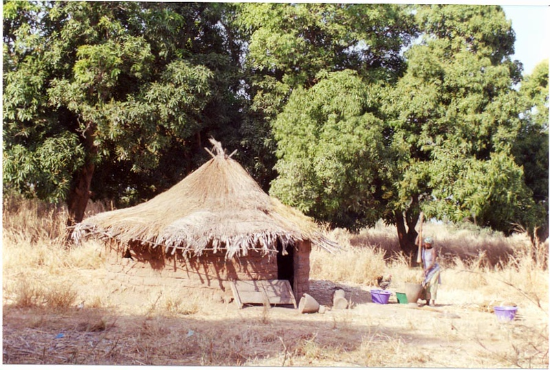Nema Village across river from MacCarthy Island, The Gambia