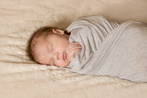 Archer~Newborn