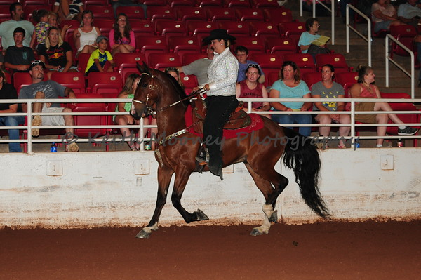 12 - Country Saddle 3 Gaits