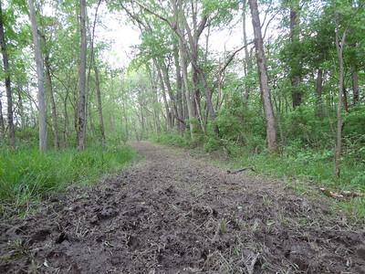 Eagle Creek Iron Eagle Paddle and Run Course Aftermath