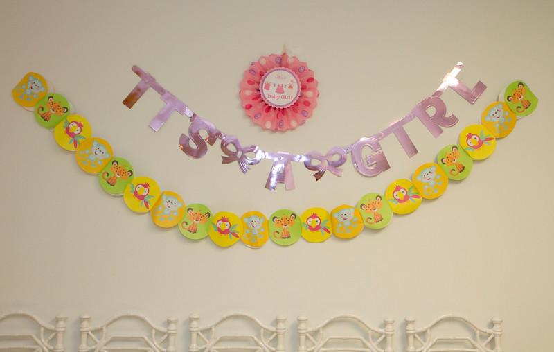 2015 09 Chitra Baby Shower_176.JPG