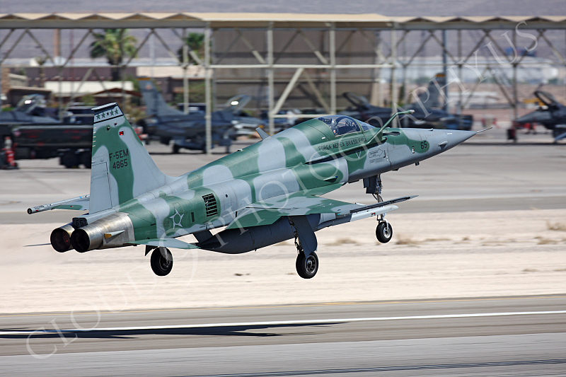 F-5FORG 00008 Northrop F-5E Freedom Fighter Brazilian Air Force 4865 Nellis AFB by Peter J Mancus.JPG