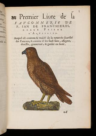 Jean de Franchière, La fauconnerie de F. Jan des Franchieres