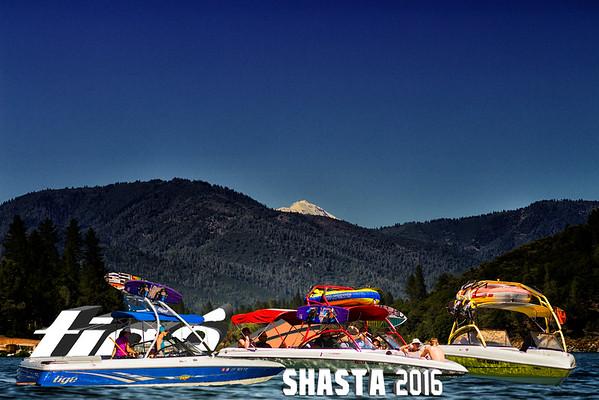 Shasta 2016