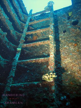 Underwater Hawaii '09