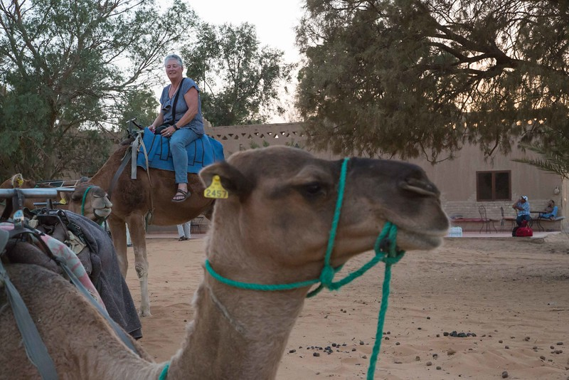 160924-130335-Morocco-0135.jpg