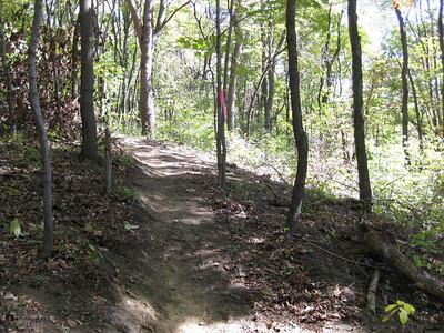 Deer Lakes Trail Maintenance - 20081005