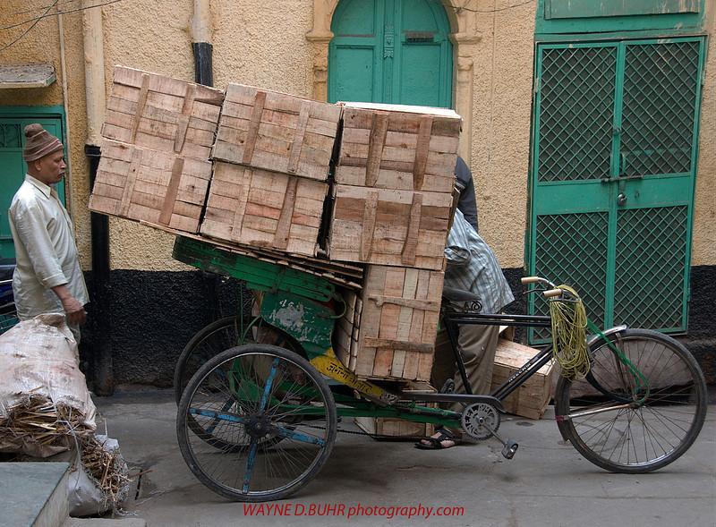 INDIA2010-0129A-246A.jpg