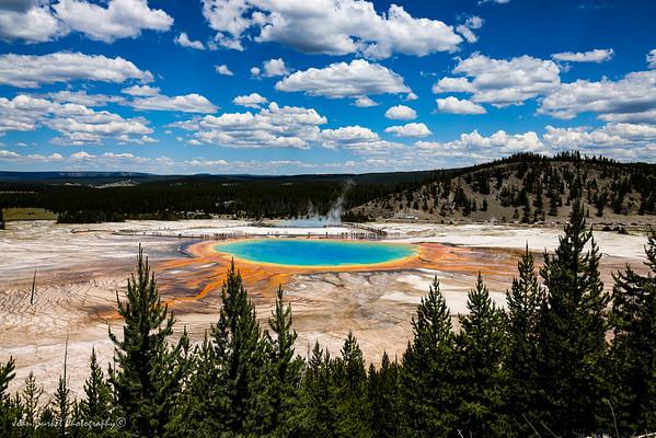 VBT Bike Trip 2021 Yellowstone