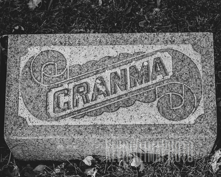 Graceland110218-231.jpg