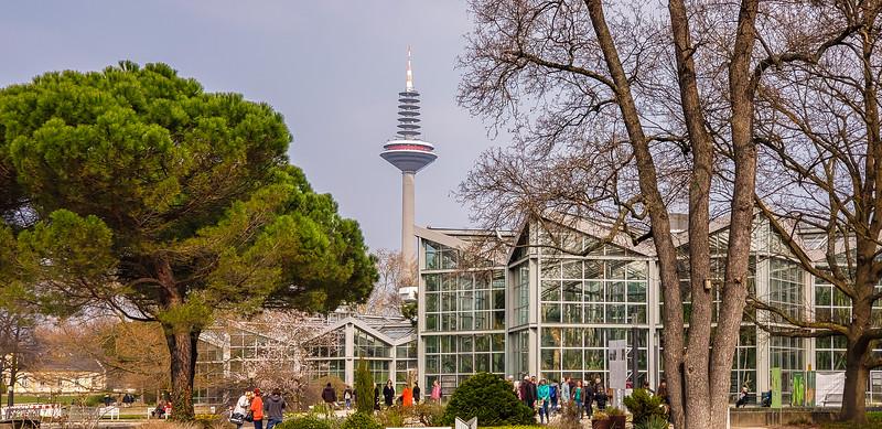 Frankfurt 3-24-19-86.jpg