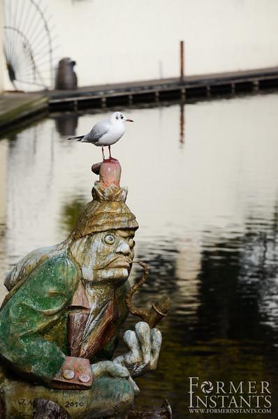 Gull on Goblin