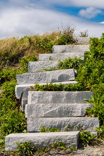 Up the Stone Steps