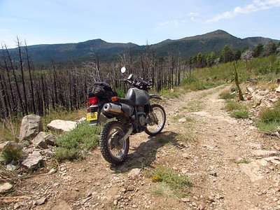 East Mountains-NE Manzano Mtns. Loop DS Ride  9-7-20