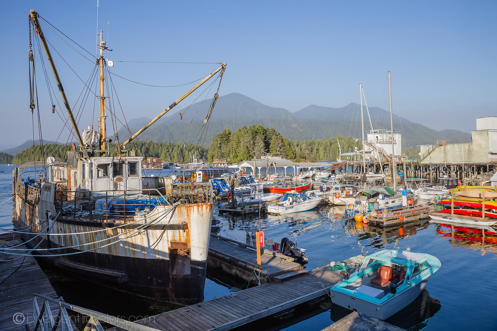 Tofino Harbor - Lina Stock
