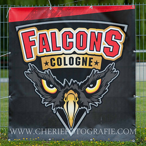 Cologne Falcons vs Kiel Baltic Hurricanes 2014