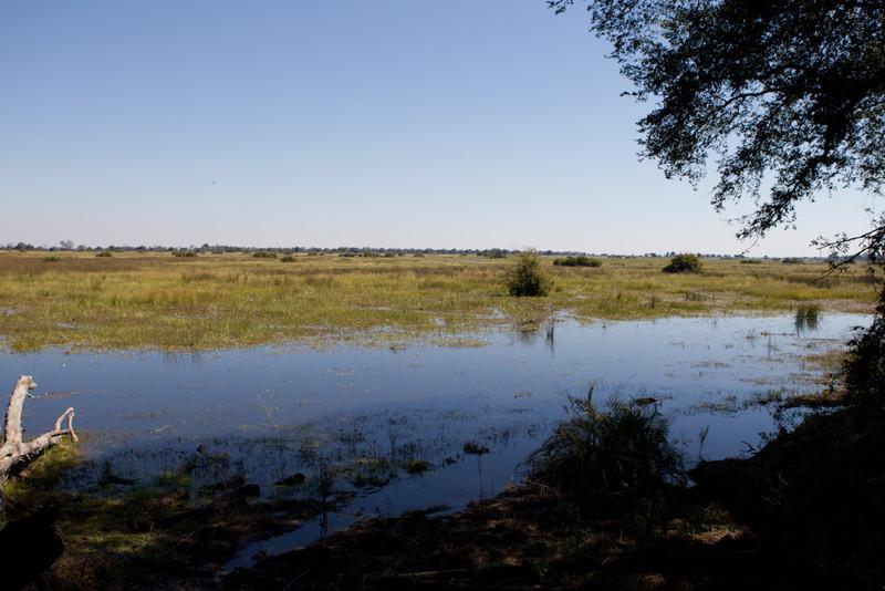 Botswana-20110718-7737.jpg