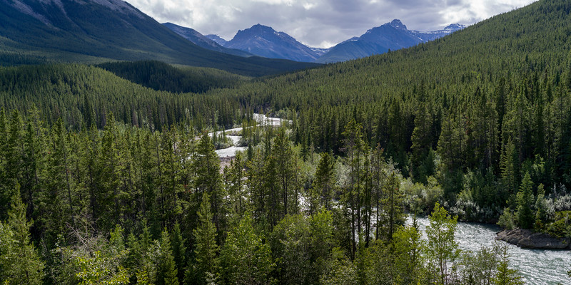 River flowing through forest with mountains in the background, David Thompson Highway, Clearwater County, Alberta, Canada