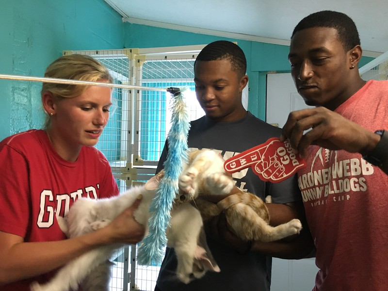Cleveland County Humane Society
