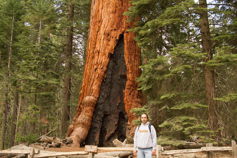 20150504-Yosemite-7D-IMG_6474.jpg