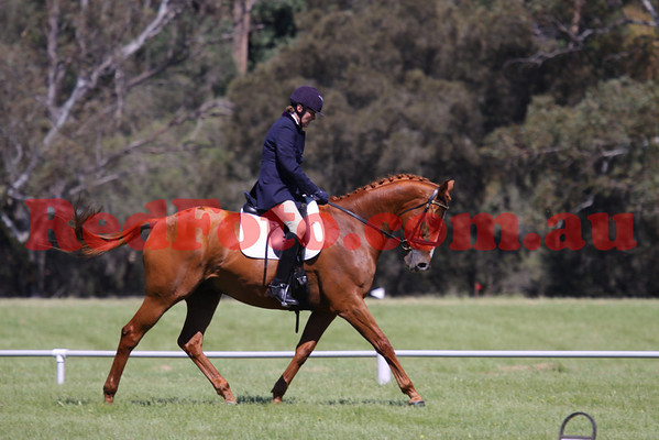 2009 10 17 Brooker Swan River Horse Trials Dressage Arenas 4 5 6 after 10am