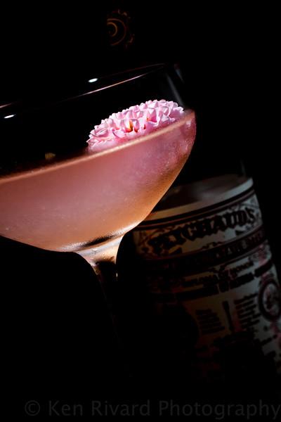 Rialto Cocktails 2014 S-9006.jpg