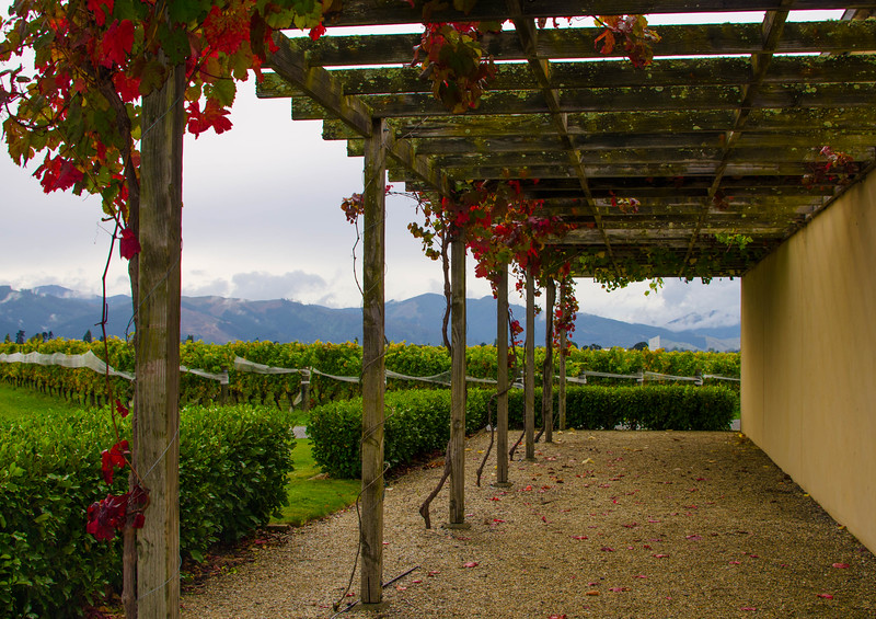 Fromm Winery, Blenheim, New Zealand