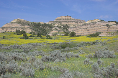 Theodore Roosevelt National Park (North Dakota)