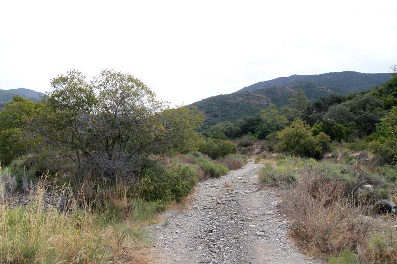 32633-Trabuco-Canyon-Rd-Mitchell-East-Trabuco-Canyon_58.JPG