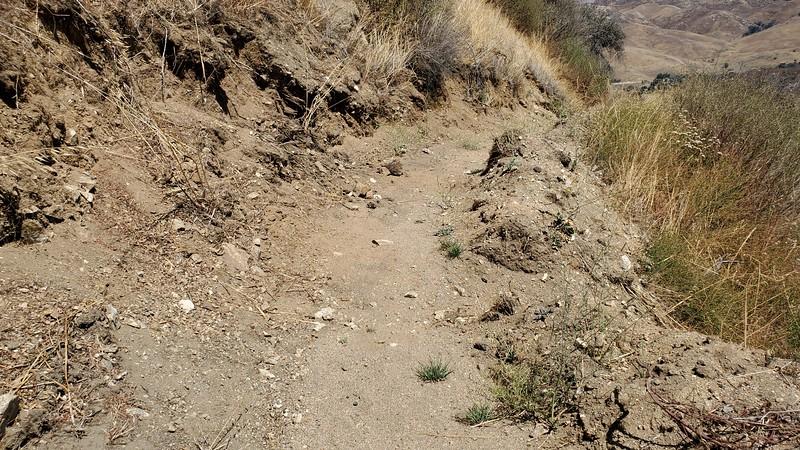 20190810033-Los Pinetos trailwork.jpg